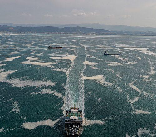 1 Temmuz 2021 / 17:00-19:30 : Disiplinlerin ve İdari Sınırların Ötesinde Deniz ve Salyası (Çevrimiçi Konuşma)